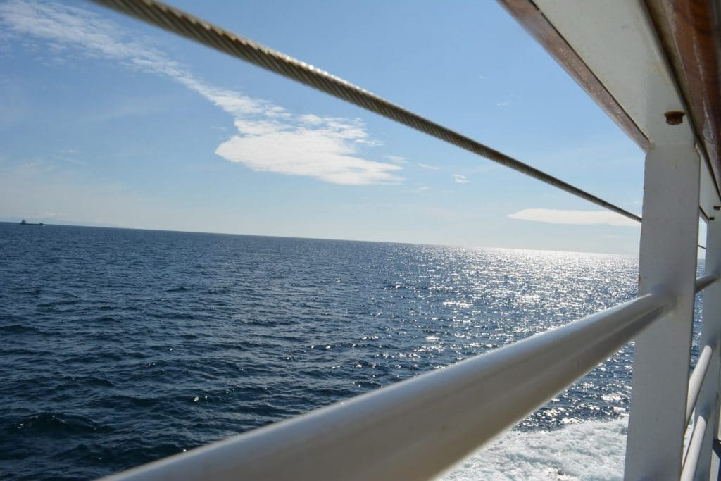corporate-nyc-yacht-charter-cant-duck-out